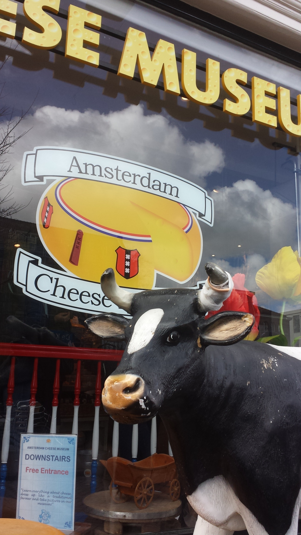 the outside of the cheese museum in Amsterdam with a cow